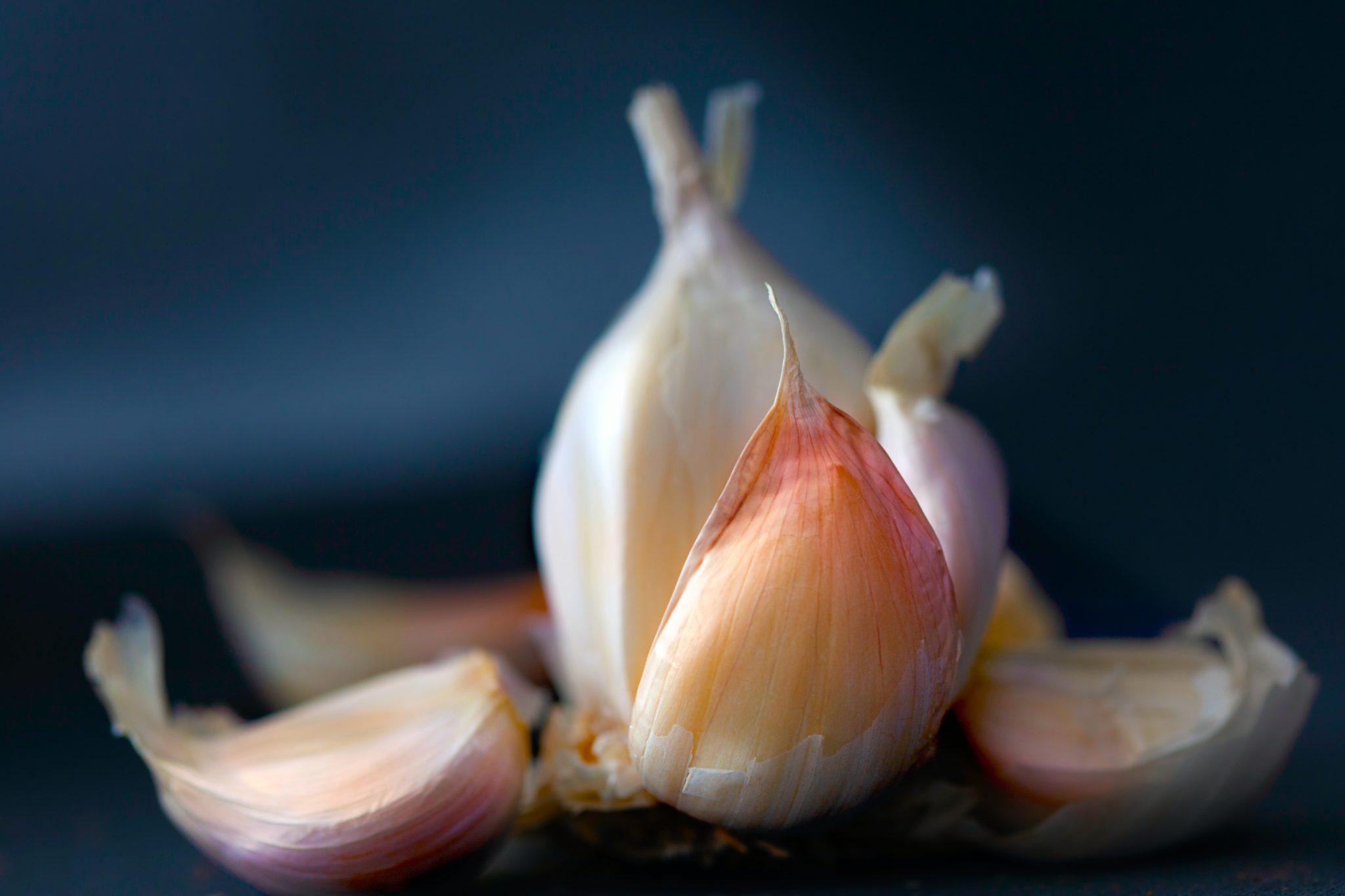 bulb of garlic broken into cloves on dark background