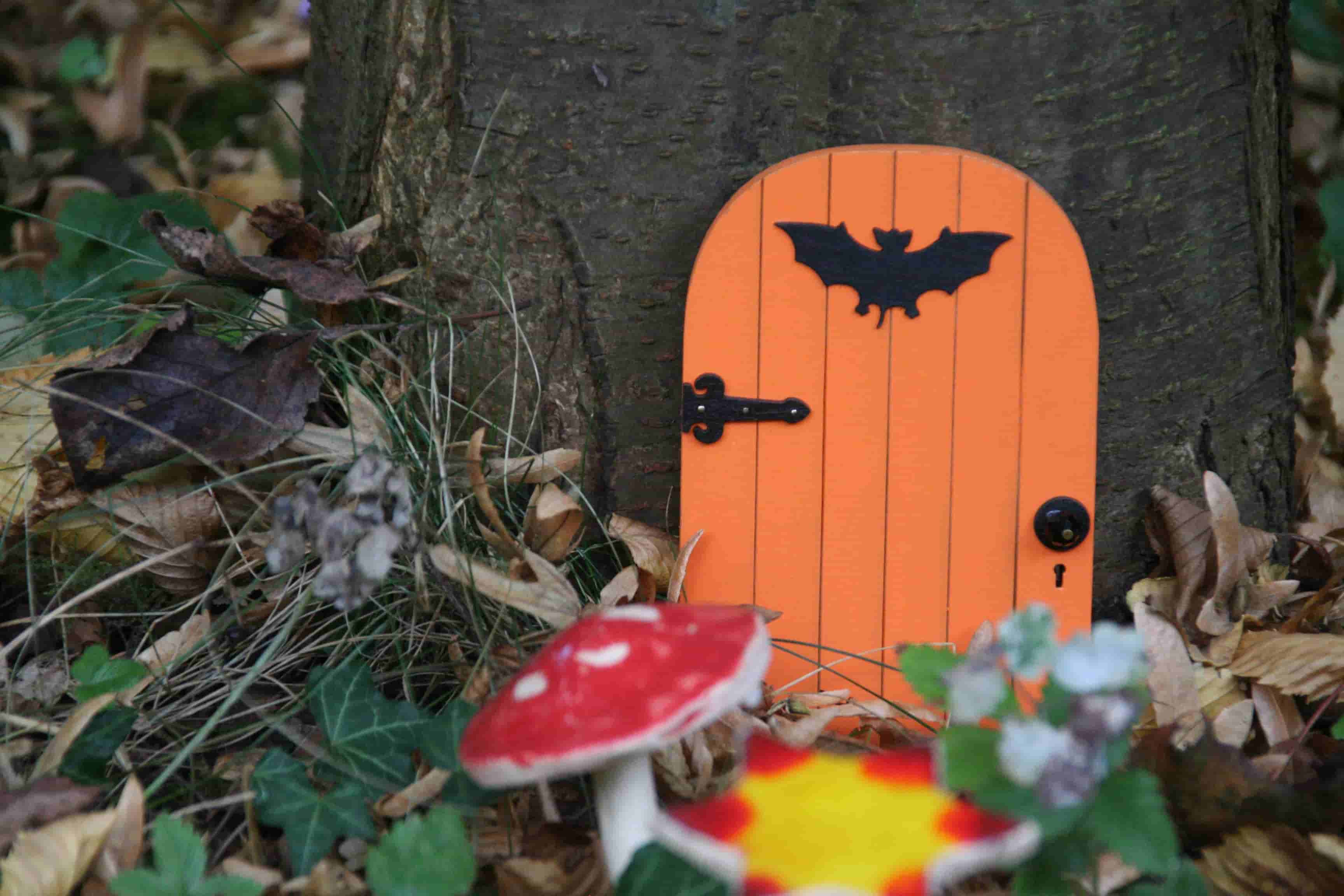 orange fairy door and mini flowers and toadstools against a tree trunk