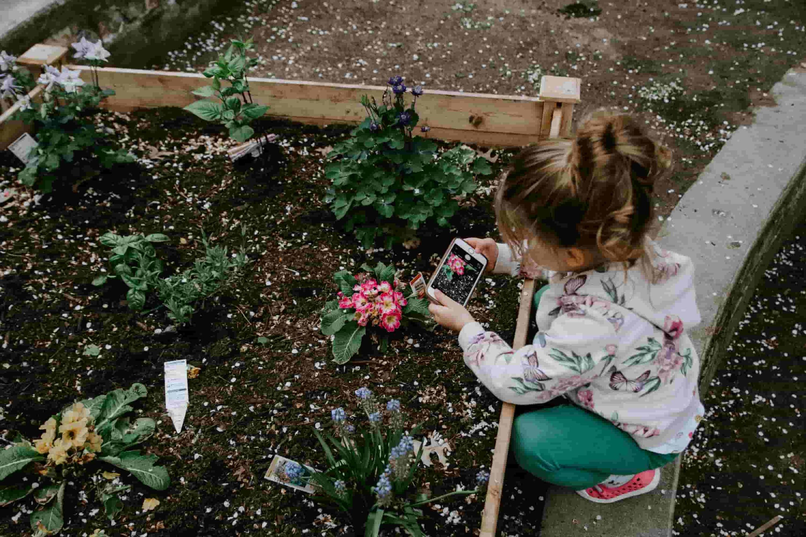 child crouching in garden, taking a photo of flowers