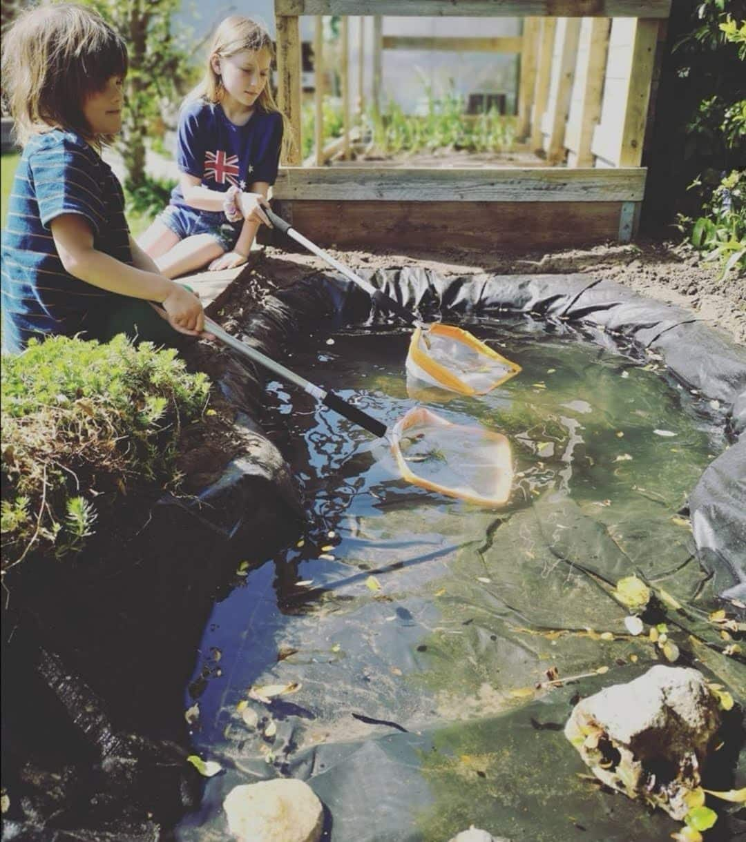 gardening-with-children-pond1