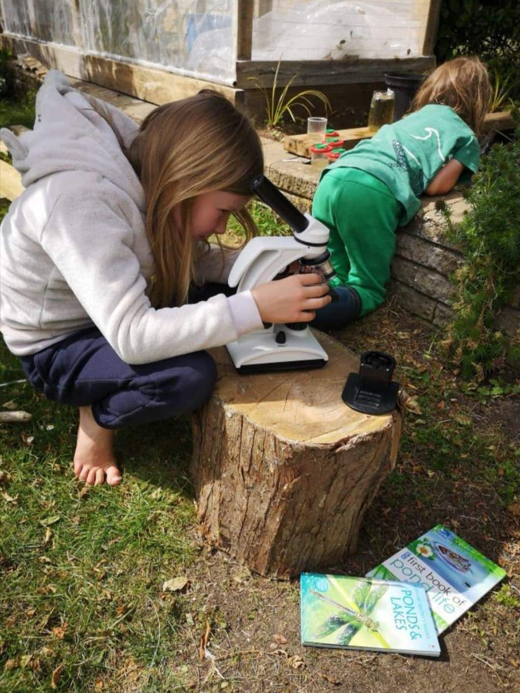 children in the garden - one looking into pond, one with microscope