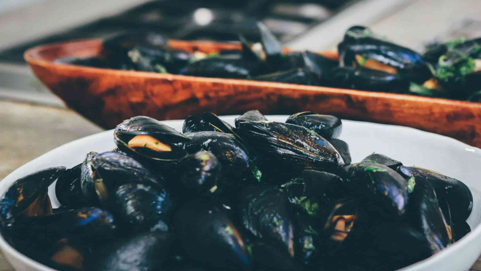 mussels in season in May - in a white bowl