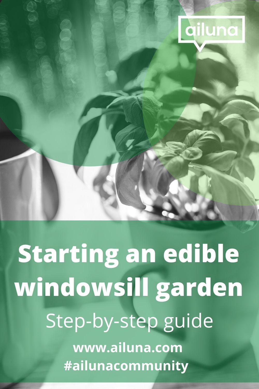 starting an edible windowsill garden pinterest pin