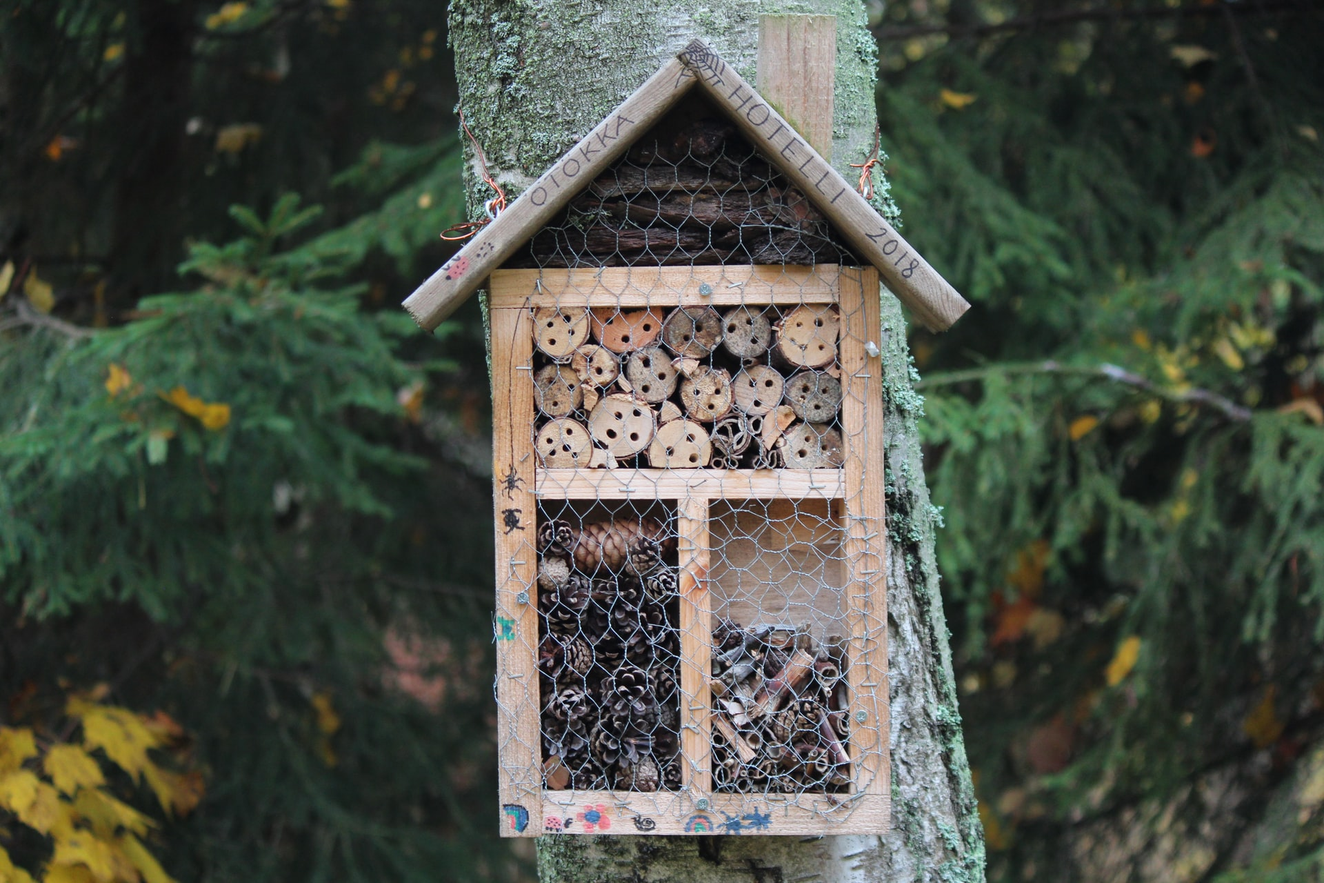 brown wooden insect hotel filled with natural materials attached to a tree