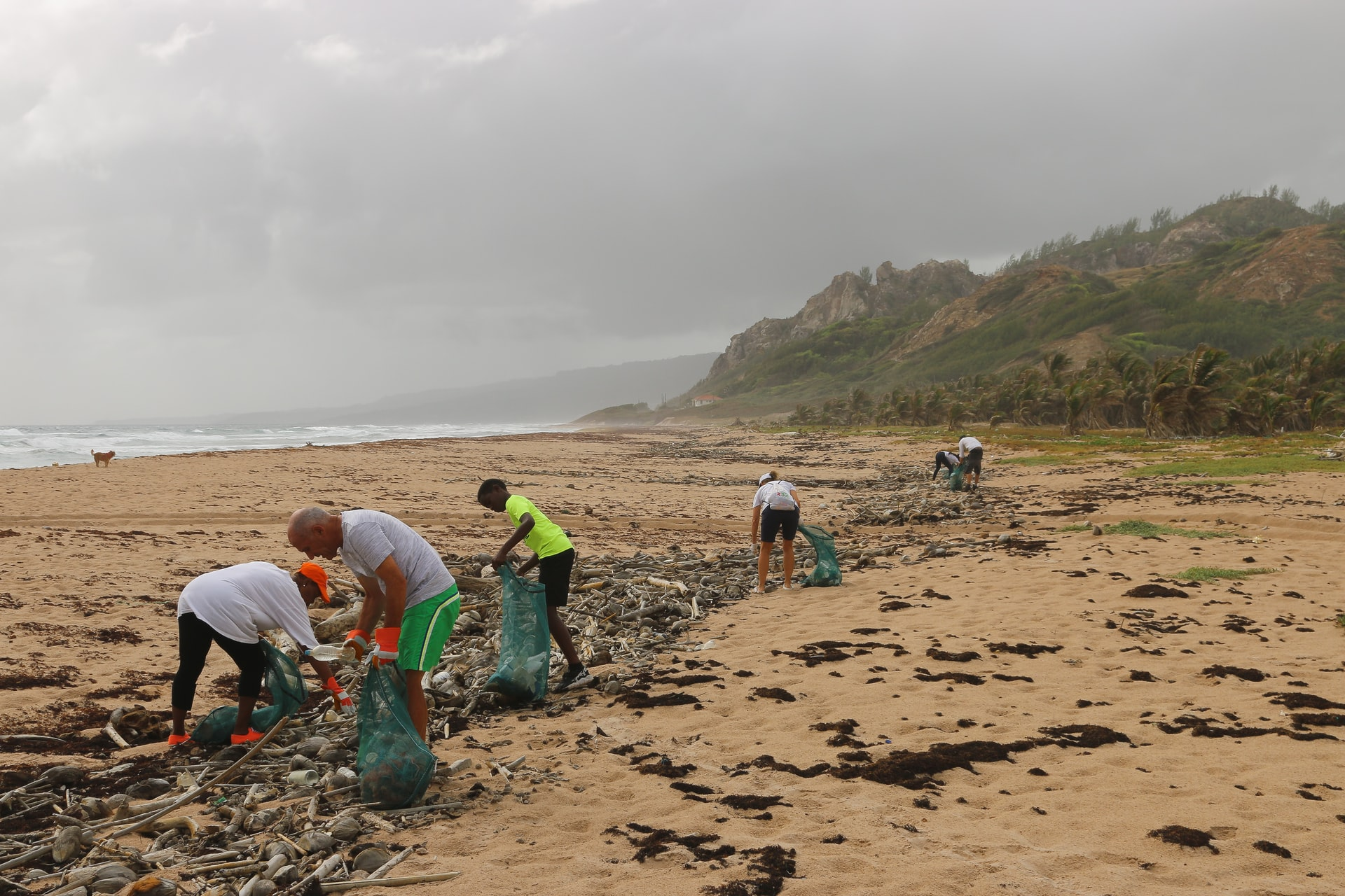 people working together to clean up a littered beach beach