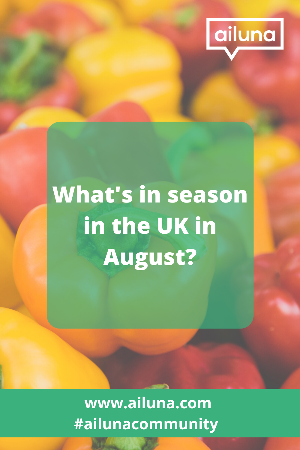 What is in season in the UK in August Pinterest pin