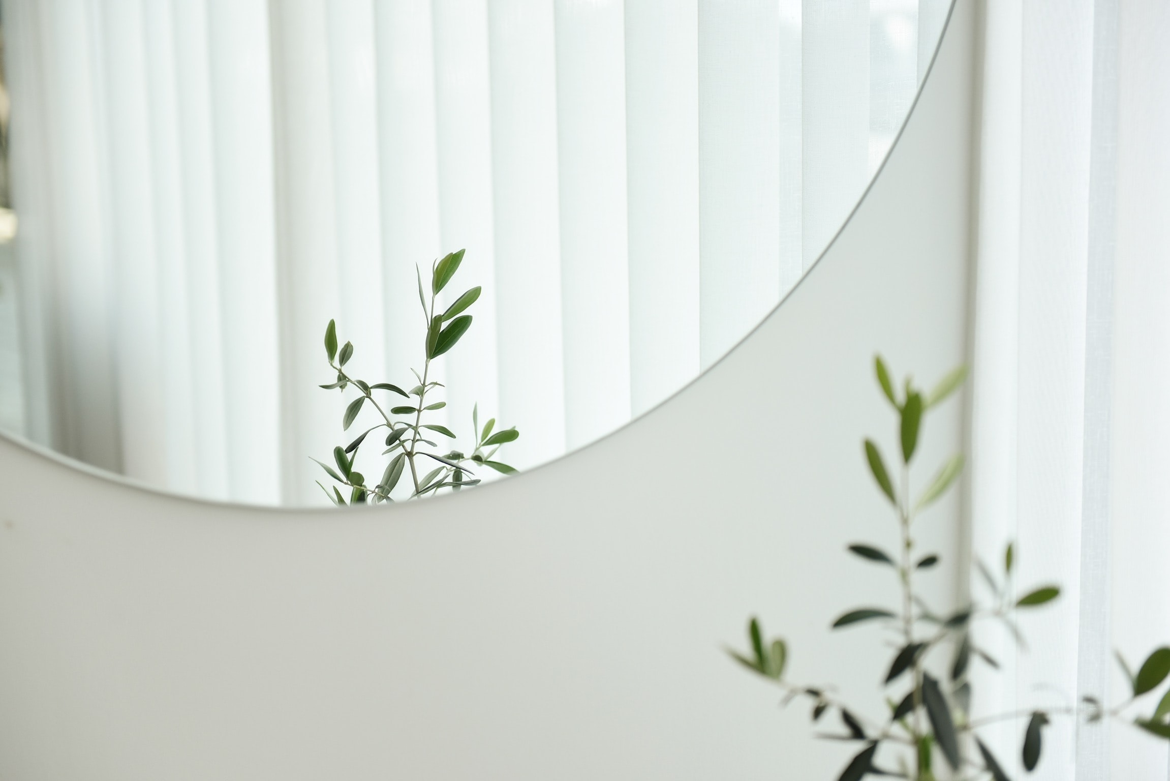 Circular mirror on a white wall with a plant reflected in it