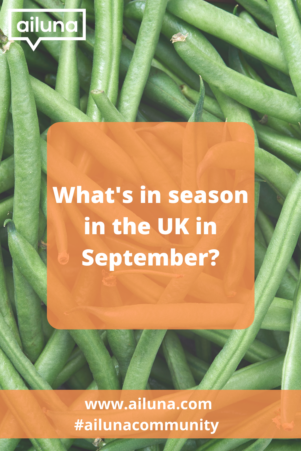 what is in season in the uk in september pinterest pin