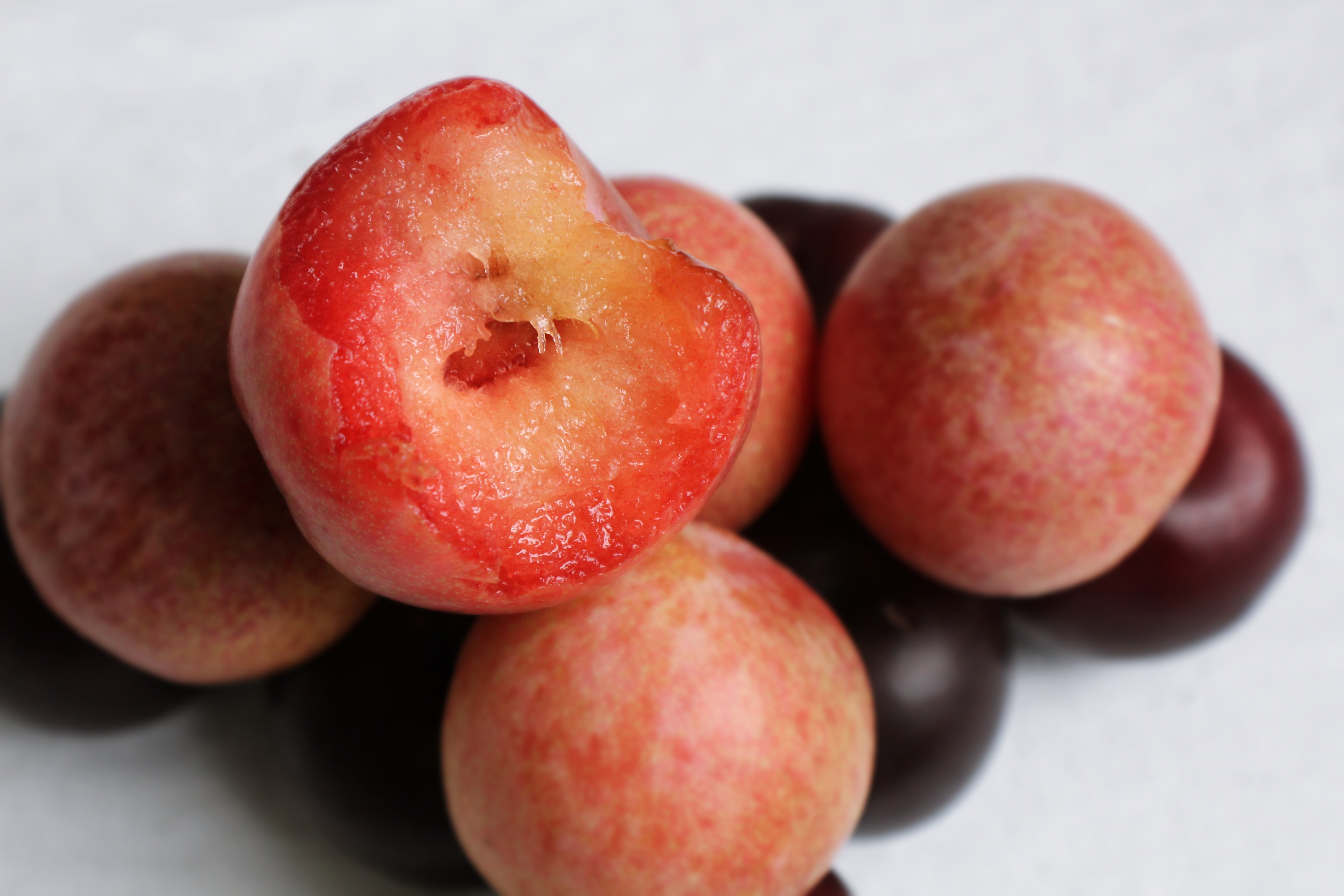 plums are in season in the uk in September