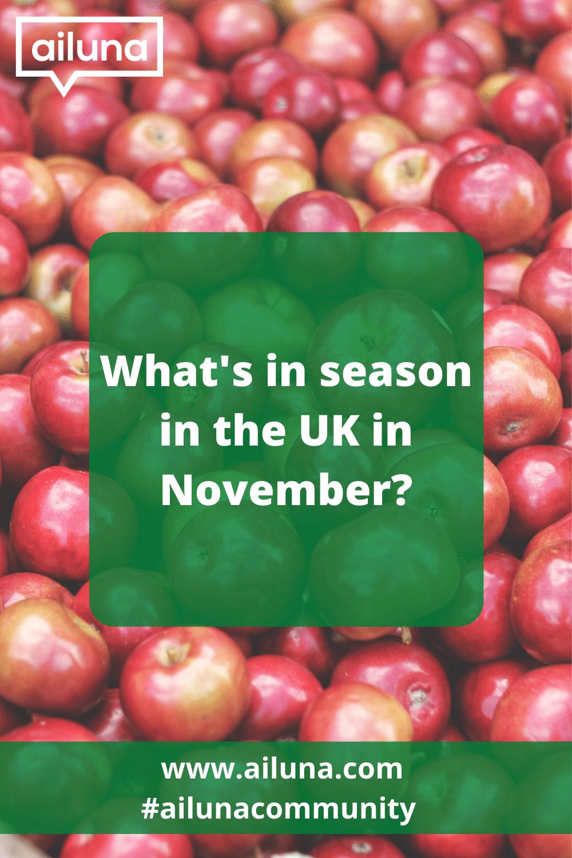 what is in season in the uk in November Pinterest pin