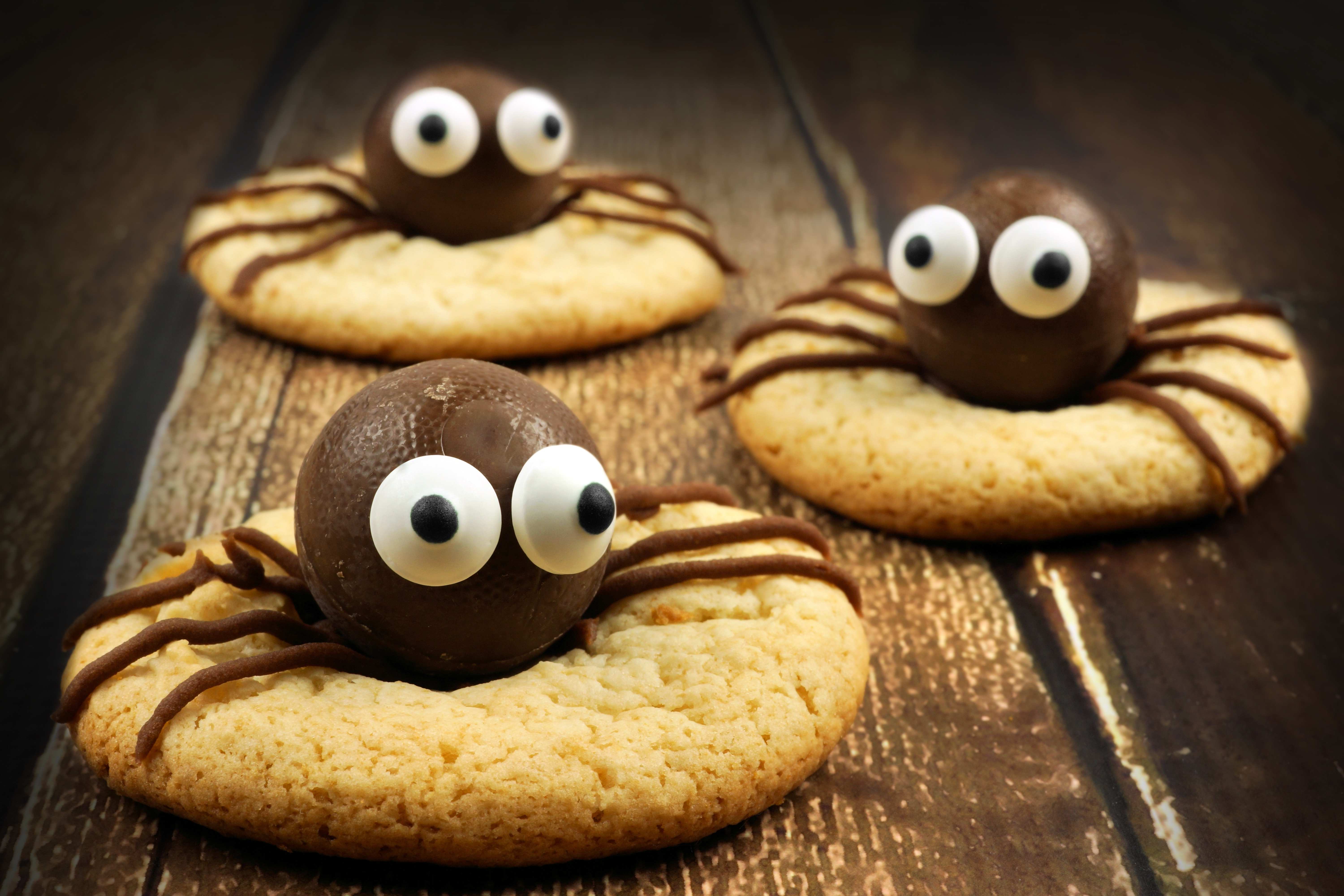 chocolate spiders on top of biscuits