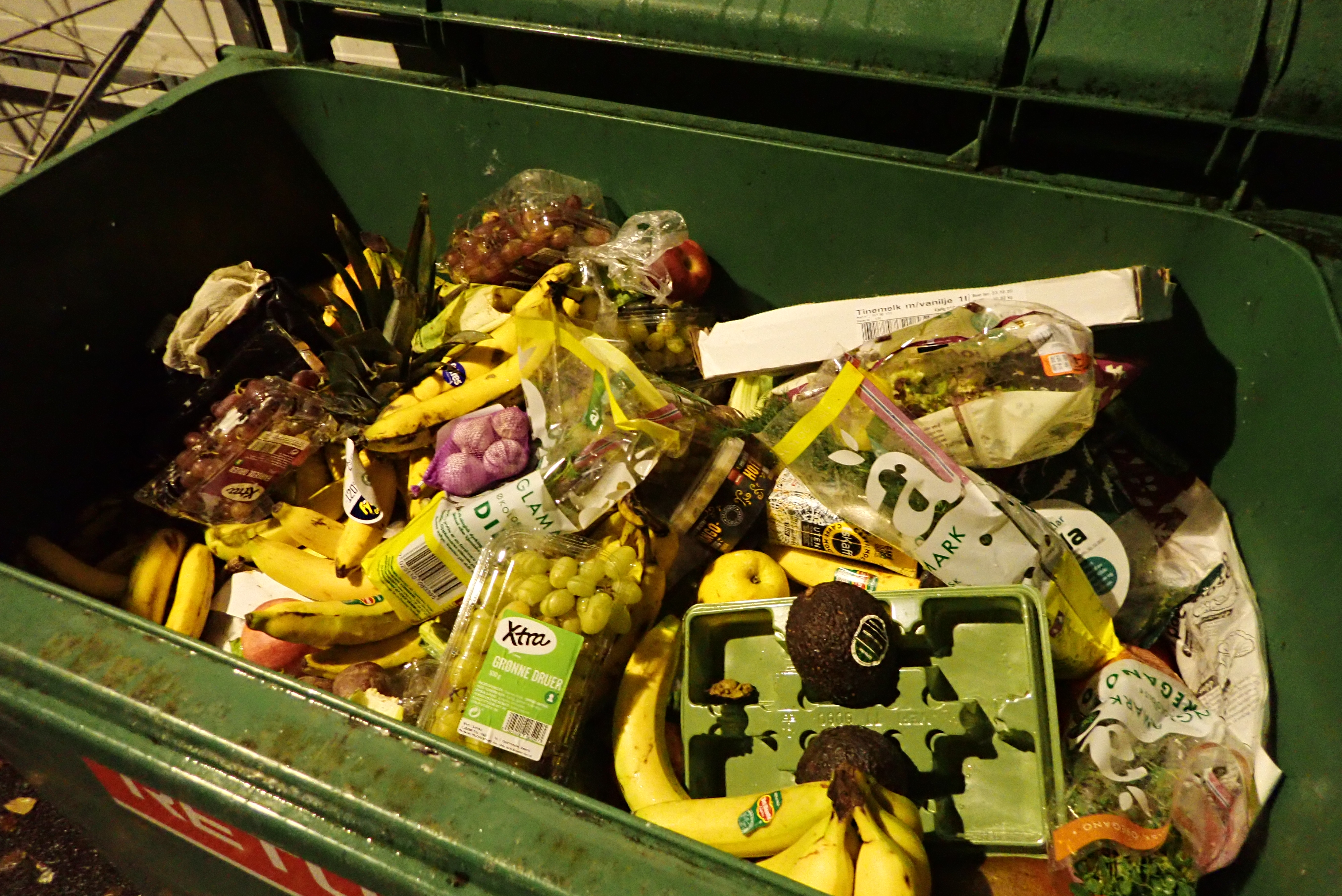 a dumpster full of discarded food