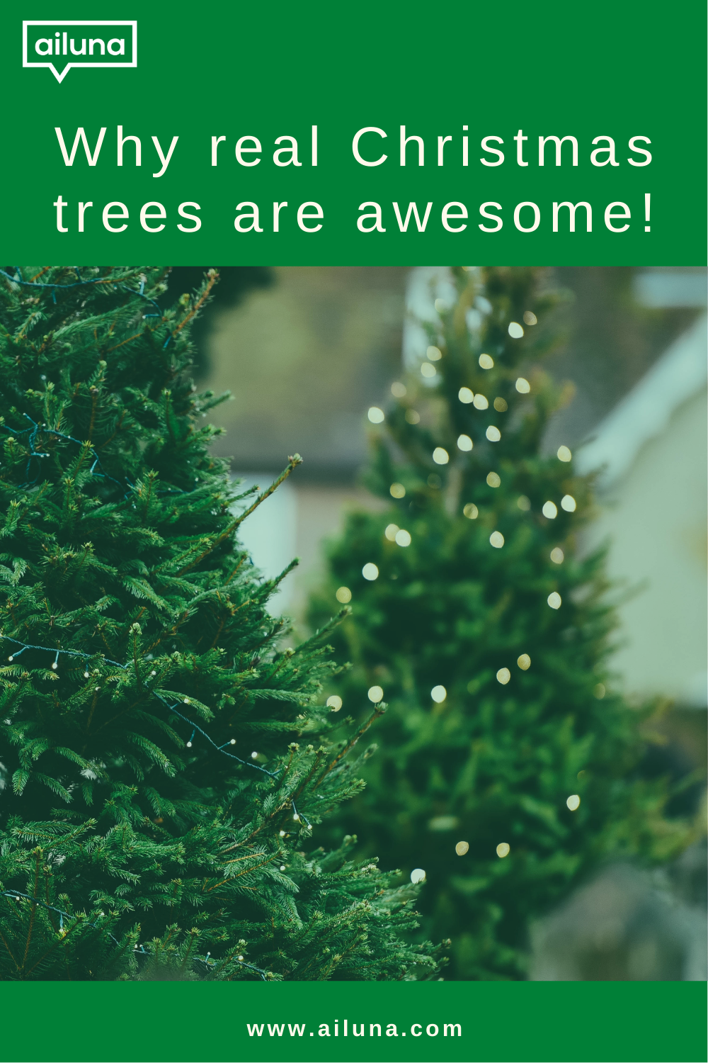 why real christmas trees are awesome Pinterest pin