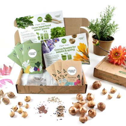 an example of the seeds and accessories in the grow club box