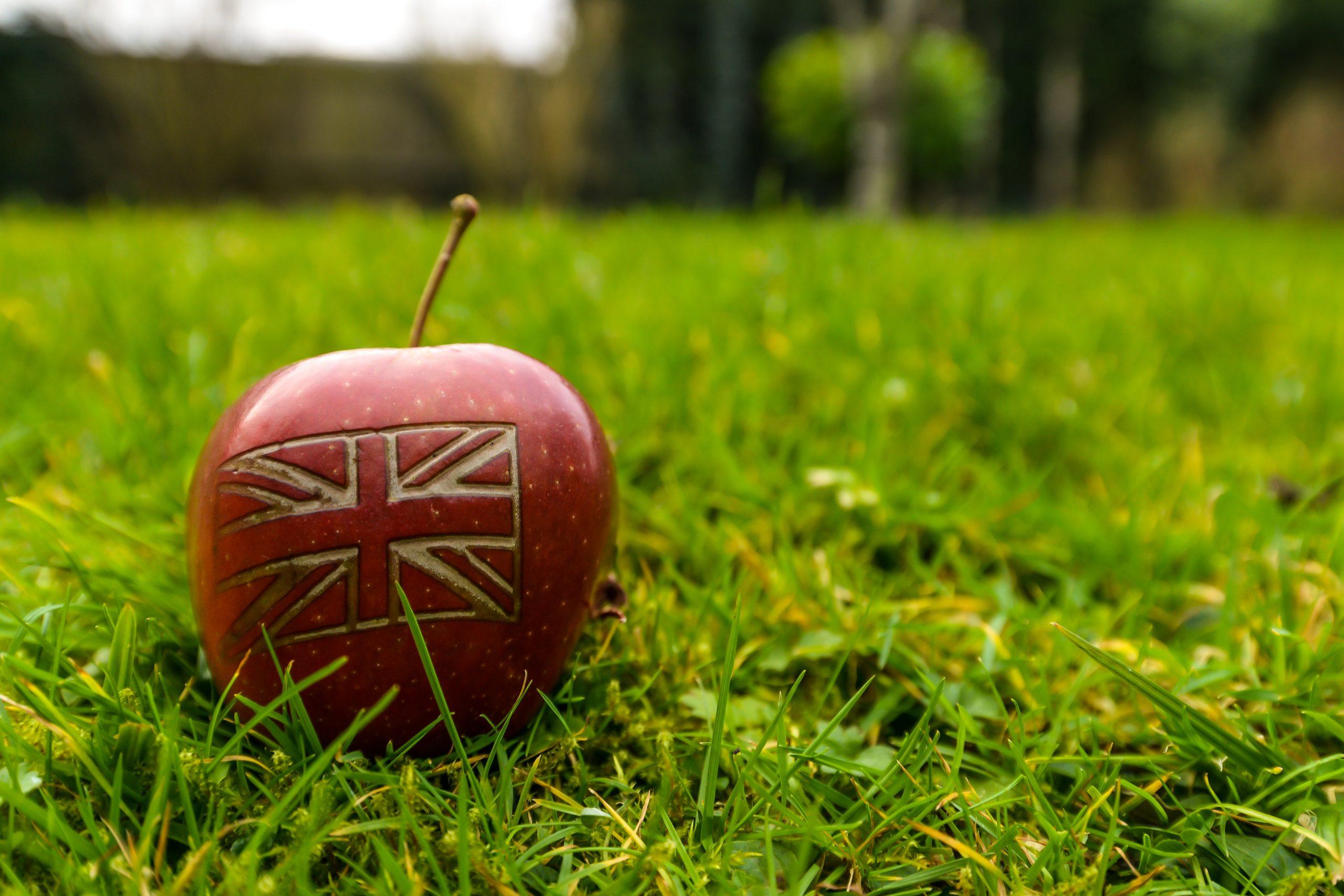 uk apples in season in February